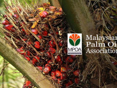 UK Should Open Market Wider for Malaysian Palm Oil