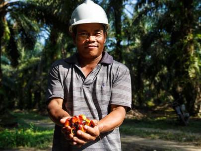 Keberlanjutan Dan Produktivitas Berjalan Bersamaan: Bagaimana Petani Kecil Di Indonesia Menuntun