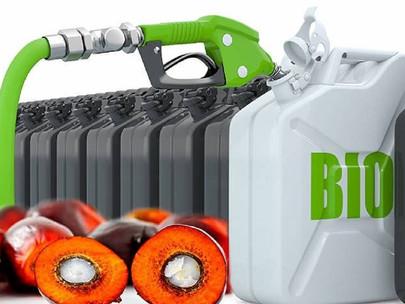 Implementation of B20 Biodiesel Mandate in Sabah, Peninsular Malaysia Delayed Again
