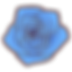 blue_rose_png_by_hitose-d9sd9up.png