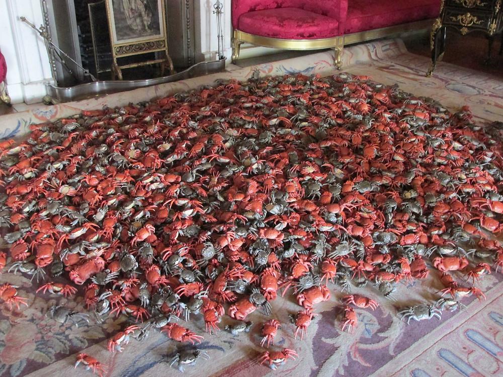 4 Crabs 1.jpg