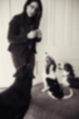 Grand Rapids dog training