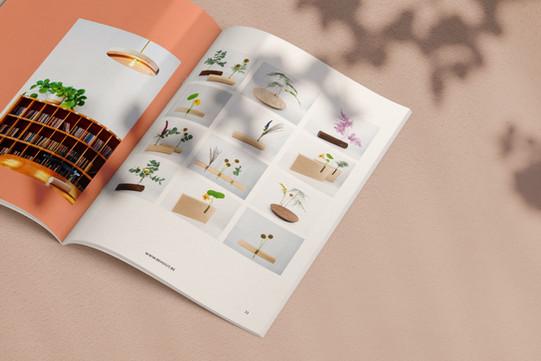 behout_magazine-5.jpg