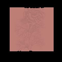 Frames with flowers_V2_08 kopie 2.png