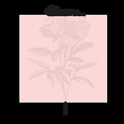 Frames with flowers_V2_08 kopie 3.png