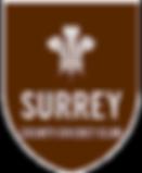 surrey%2520cricket_edited_edited.png