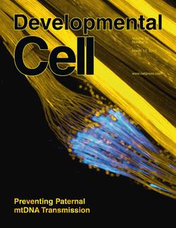 Chhabra et al. Dev. Cell 2012