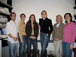 Mikkolalab 2005 In the lab