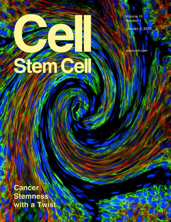 Prashad et al. Cell Stem Cell 2015