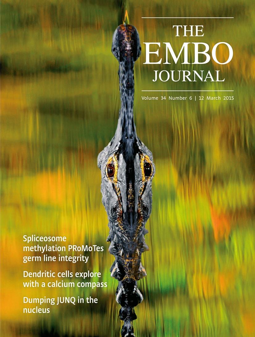 Org, Duan et al. EMBO 2015