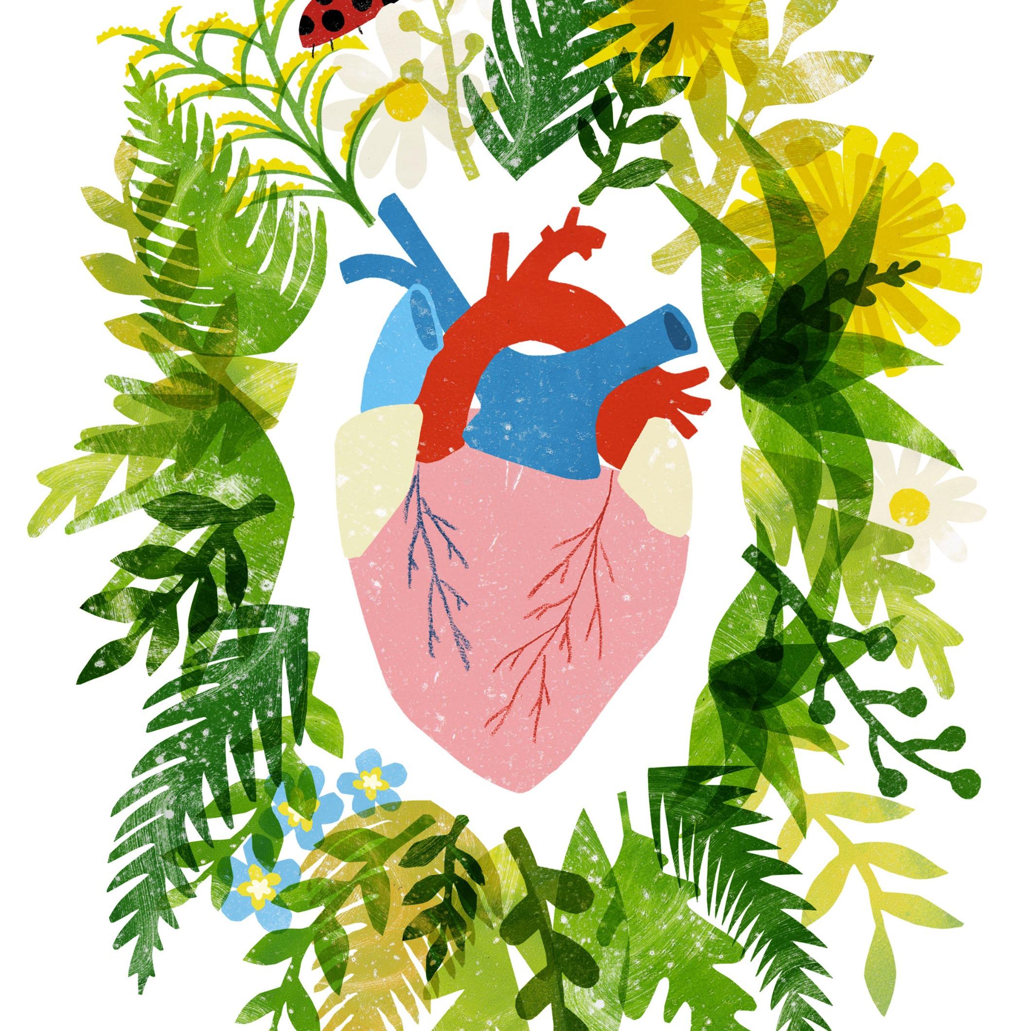 heart2_edited