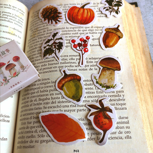 PACK DE STICKERS OTOÑO