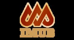 logo IMUB.png