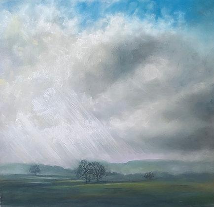 Rainswept fields above Chelmorton