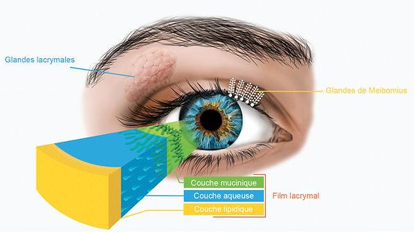 Film lacryma sécheresse oculaire expert vison enter