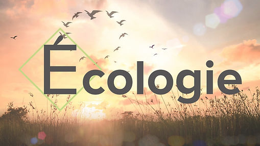 écologie site internet.jpg