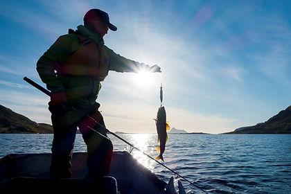 sjøfiske-bruk-e1529867935594.jpg