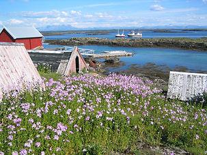 Helgeland-Reiseliv_www.visithelge