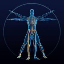 Kinesiologia BIODENTS