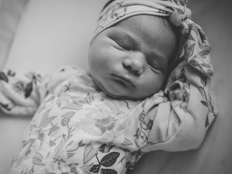 newborn | fresh 48 session | newborn photographer in ann arbor, michigan