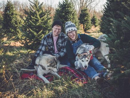 christmas tree farm session | holiday | family photographer in ann arbor, mi