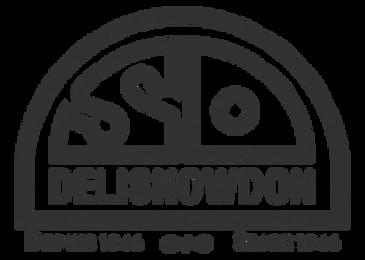 Delisnowdon.png