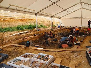 site-paleontologique-angeac-charente.jpg