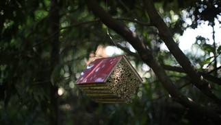 Bee Libraries