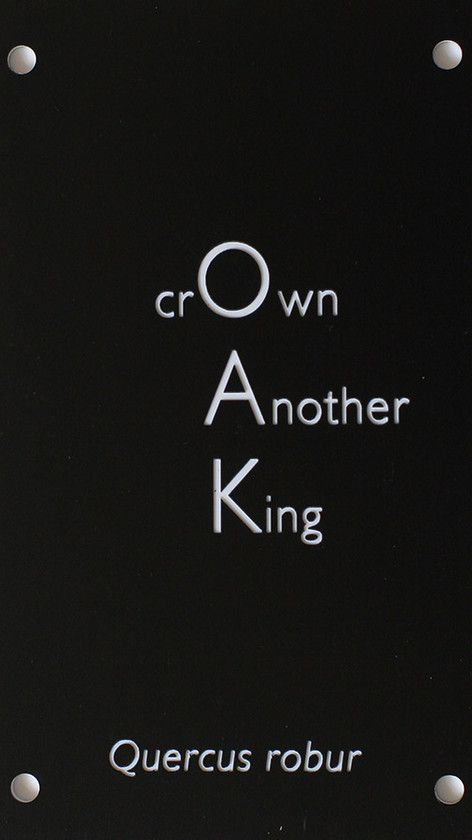 Oak (Crown another king)