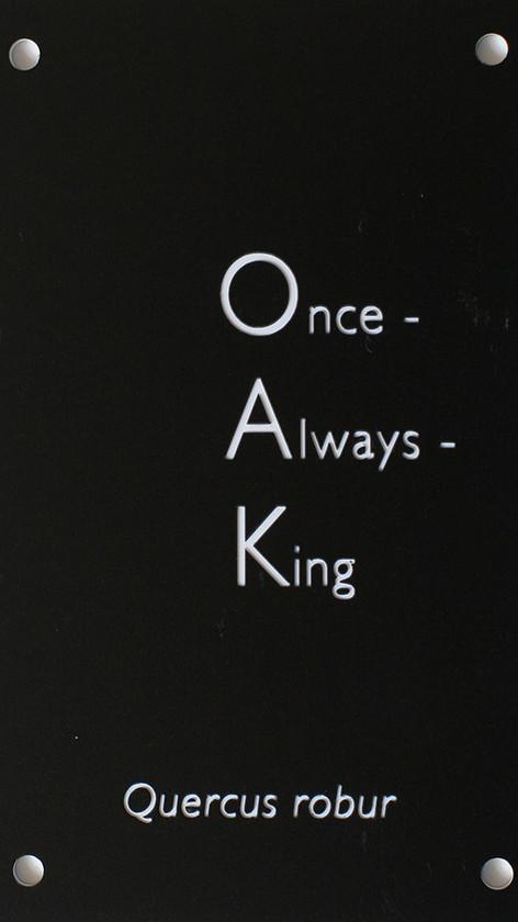 Oak (Once Always King)