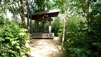 Woodland Platform