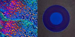 GeoTec PLANKTON & DEEP BLUE LARGE 150