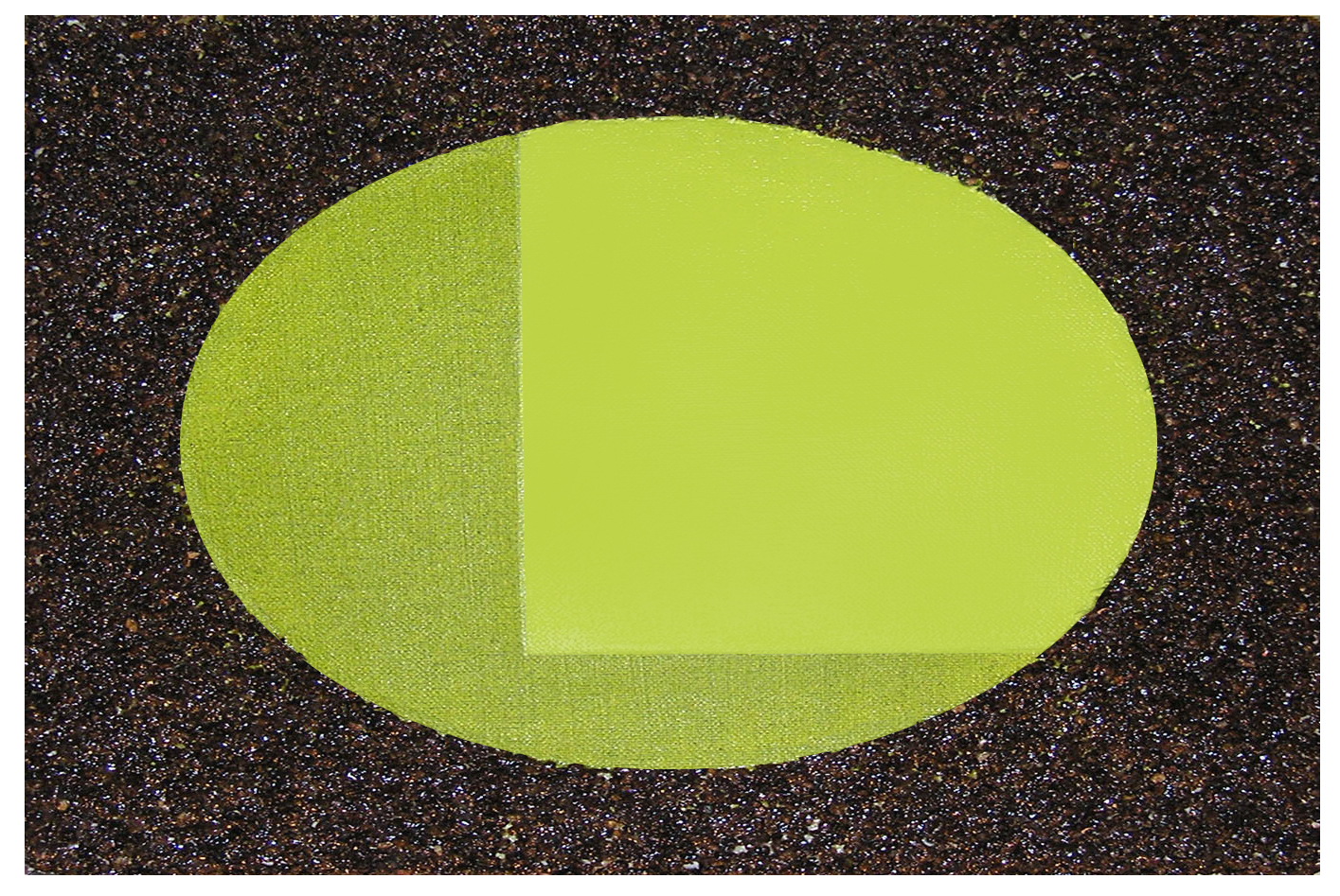 C G THE-GREEN-OVAL 72 24_ X 36_X 3_ 2.2011