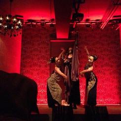 舞踊団Baliasi10周年記念公演『動物達の謝肉祭』
