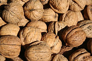 Walnut in shell.JPG
