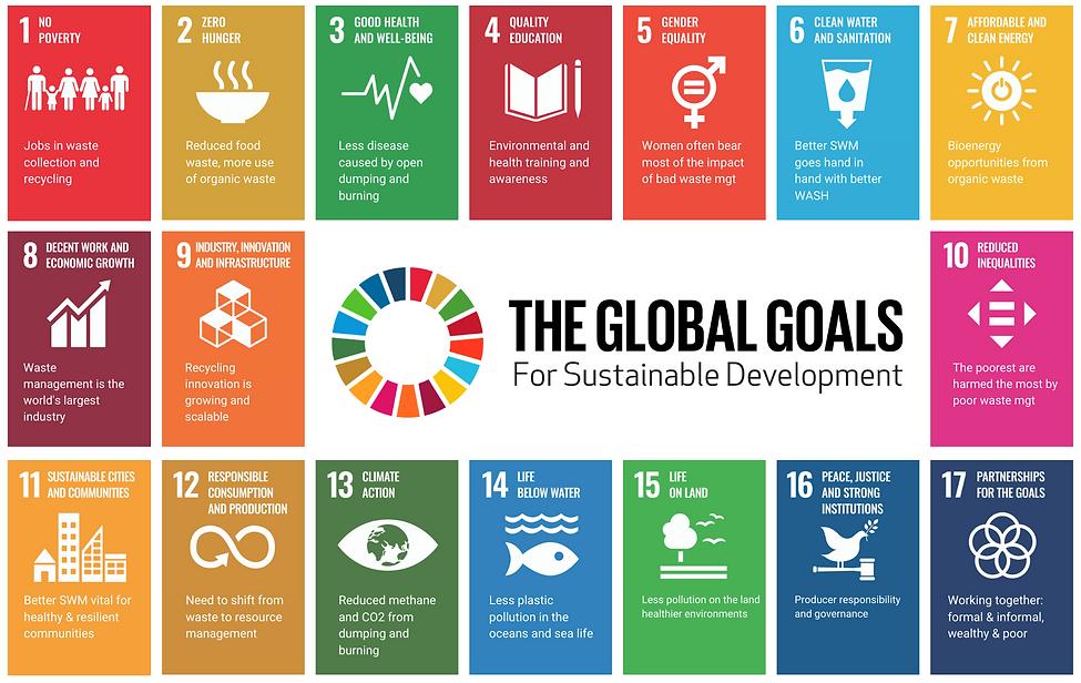 SDG Goals - BHI.png