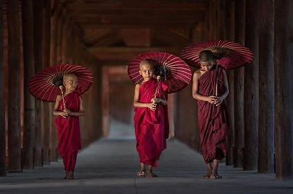 Indo Routes - Agencia de operadores turísticos a medida