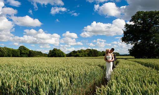 bride-groom-in-corn-field.JPG