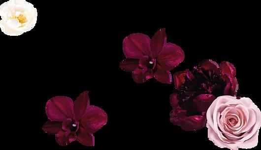 Blumen_oben.png