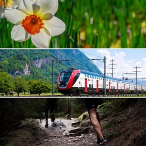 Narcisses, politique de santé et billets dégriffés CFF : bonnes nouvelles à Montreux !