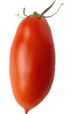 Tomate san marzano