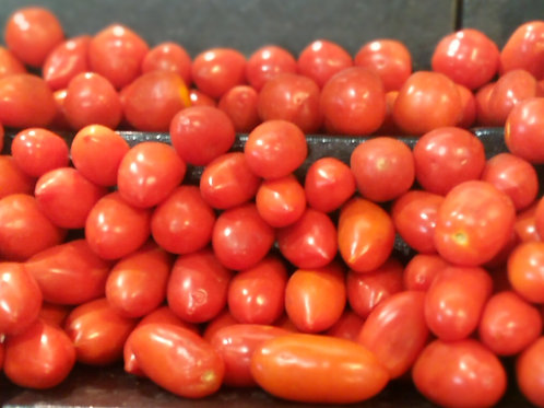 Tomatoes (1kg/paint rubber)