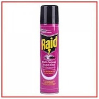 Raid multi purpose insecticide Spray 300g