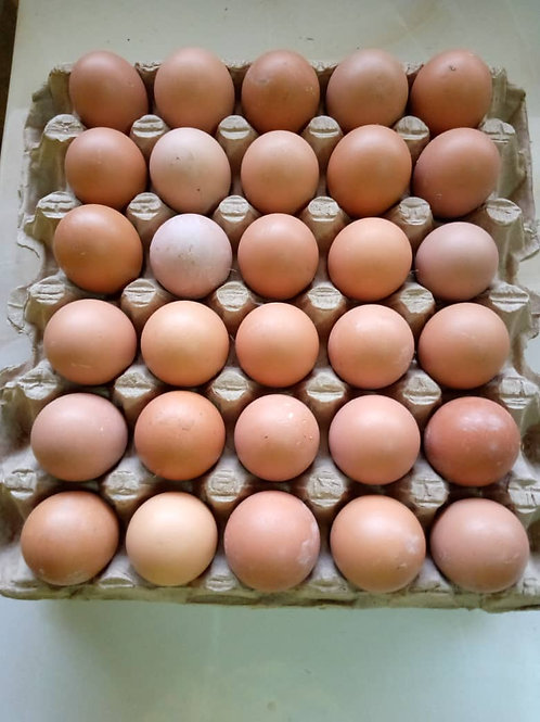 eggs( Crate)