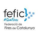 3. FEFIC Federacio Fires.jpg