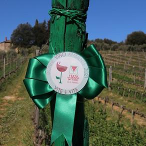 Festa delle donne del vino, rinascita e sostenibilità