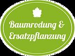 Nutzen Sie unser Komplett-Service zur Baumrodung und Ersatzpflanzung in Wien