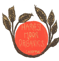 Harvest_Moon_Logo_Transparent.png