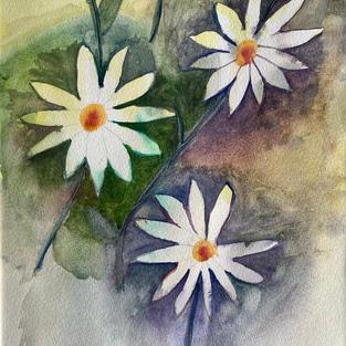 White Splended