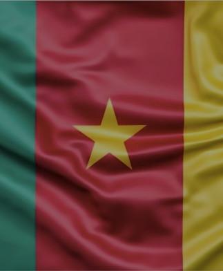 Cameroon%20Flag_edited.jpg